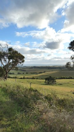 Narrawong hills to the sea by Shelley Husband