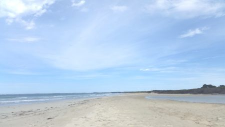 Surry river almost meets the sea by Shelley Husband